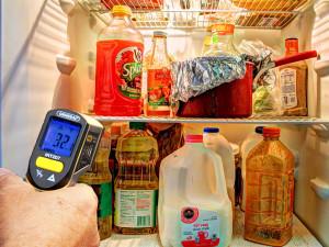 fridgecontents